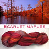 November 2018 Scarlet Maples